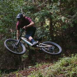 Men's Stumpjumper