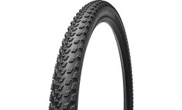 Specialized Fast Track 2BR Tire